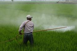 pesicide-spray-pixa