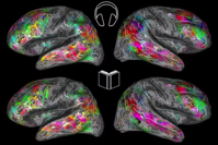 A map of the brain can tell what you re reading about ScienceBlog com