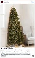 Half Christmas trees spark mixed reviews Fox News