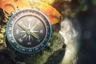 Navigater Compass