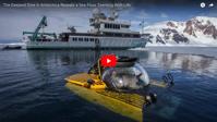 Rare underwater footage shows Antarctic seafloor is teeming with life